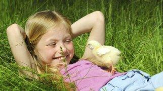 Bauernhofkindergarten