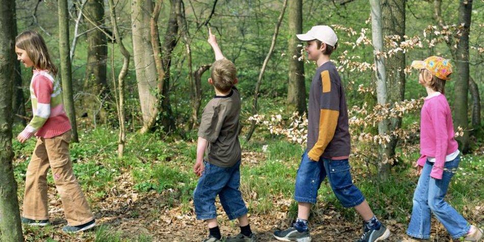 Klassenfahrten: Heimweh oder Abenteuer?