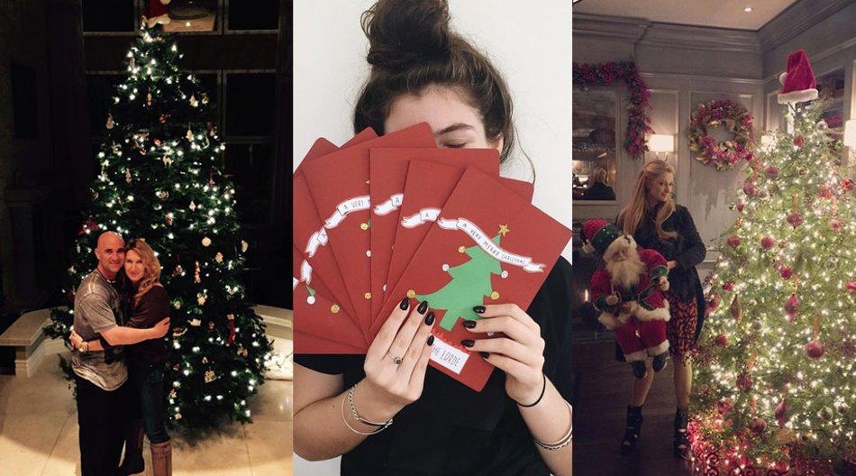 Weihnachten Stars