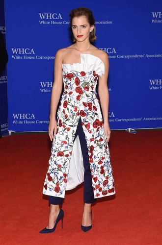 attends the 102nd White House Correspondents' Association Dinner on April 30, 2016 in Washington, DC.