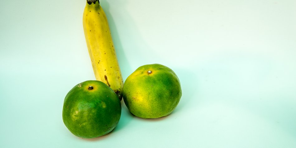 Banane und Limetten