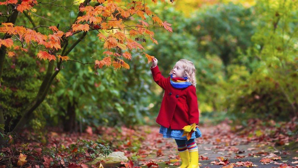 Mädchen im Herbstlaub