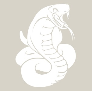 snake-302x300