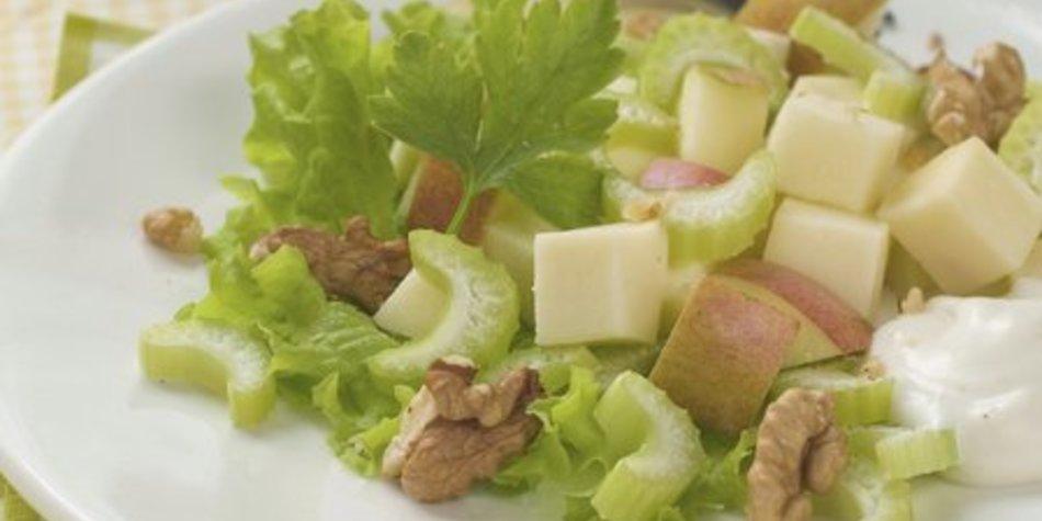 Staudensellerie Salat