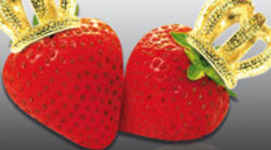 10 Dinge, die Du schon immer über die Erdbeerlounge wissen wolltest