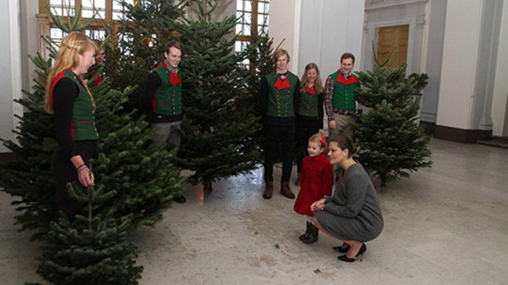 Victoria von Schweden sucht mit Estelle einen Weihnachtsbaum aus