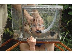 Dschungelcamp-Prüfung von Larissa Marolt