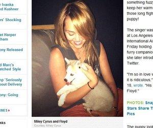 Miley Cyrus schmust mit Floyd