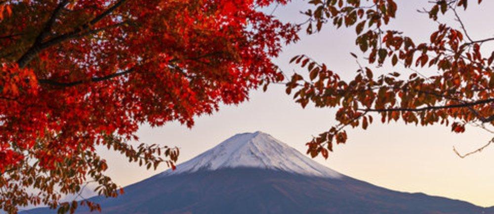 Das Japan Quiz: Wie viel weißt Du über das Land des Lächelns?