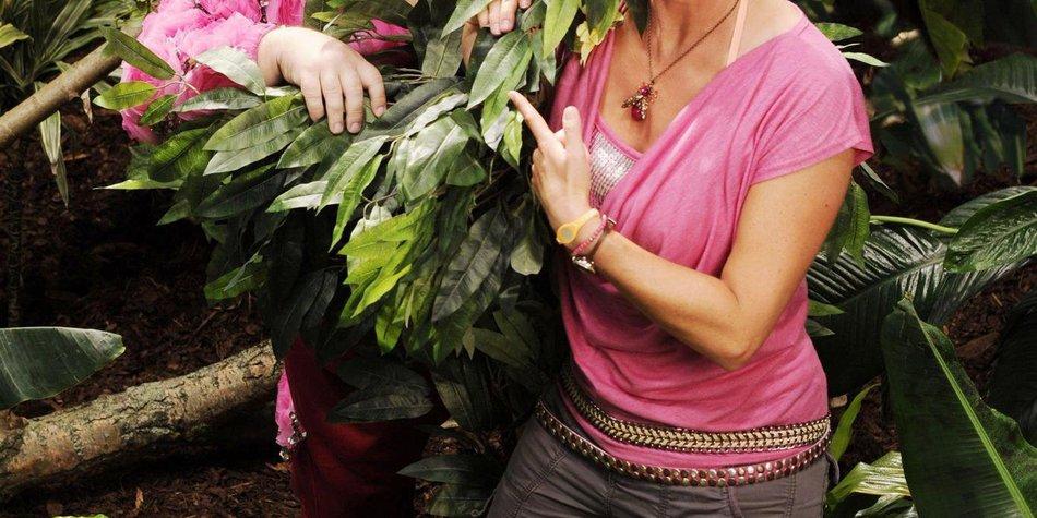 Dschungelcamp füllt sich: Weitere Kandidaten