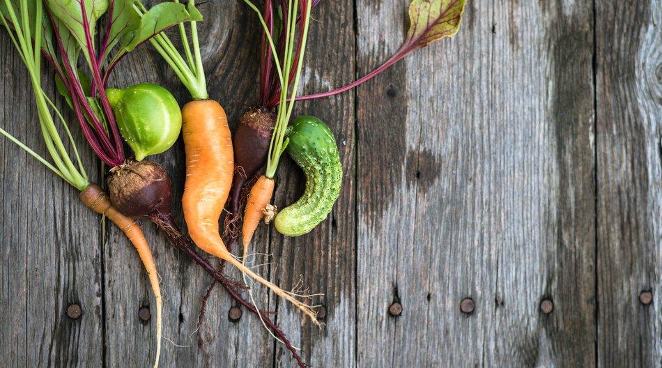 Health Food-Trends