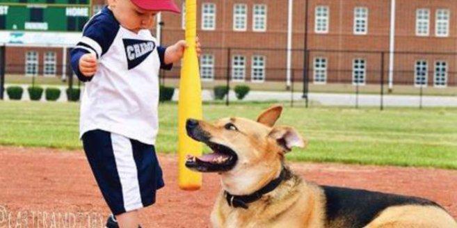 Carter und sein süßer Hund Toby erleben viele interessante Alltagssituationen.