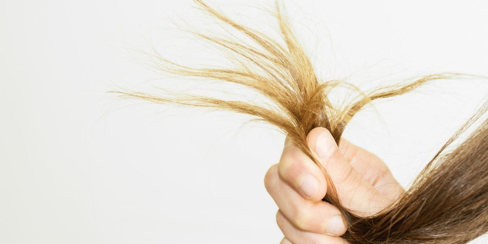 Kaputte Haare So Rettest Du Dein Haar Desiredde