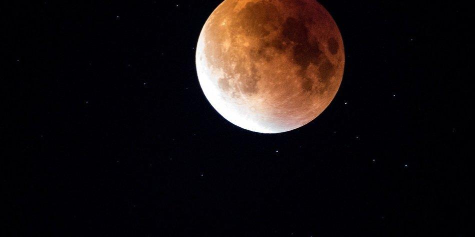 Rosa Mond