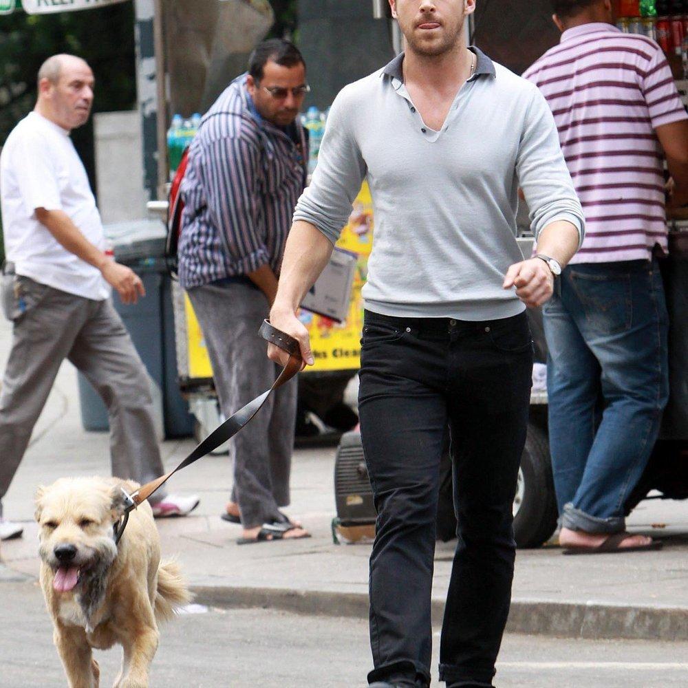 Ryan Gosling & sein süßer Freund