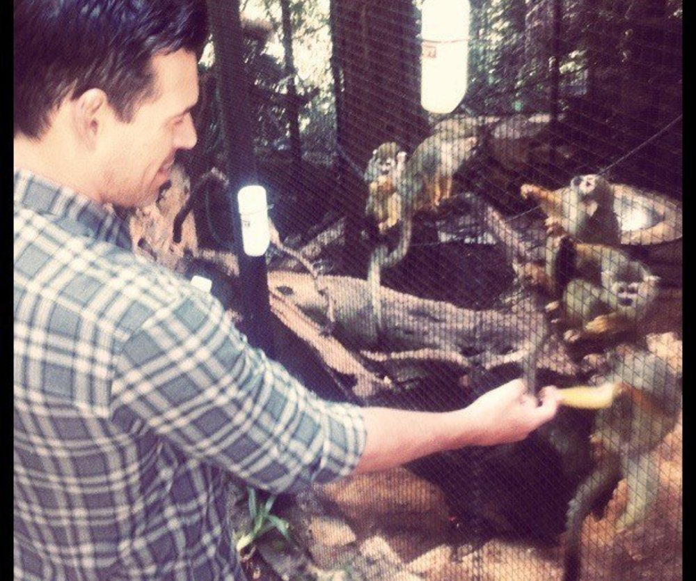 Eddie Cibrian bei den Affen