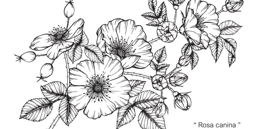 Blumen-Tattoo