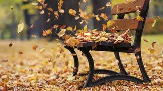 Bank mit Herbstlaub