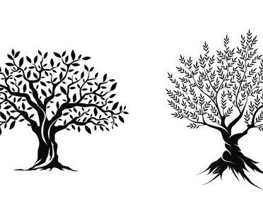baum tattoo 9 bedeutungen hinter dem lebensbaum. Black Bedroom Furniture Sets. Home Design Ideas