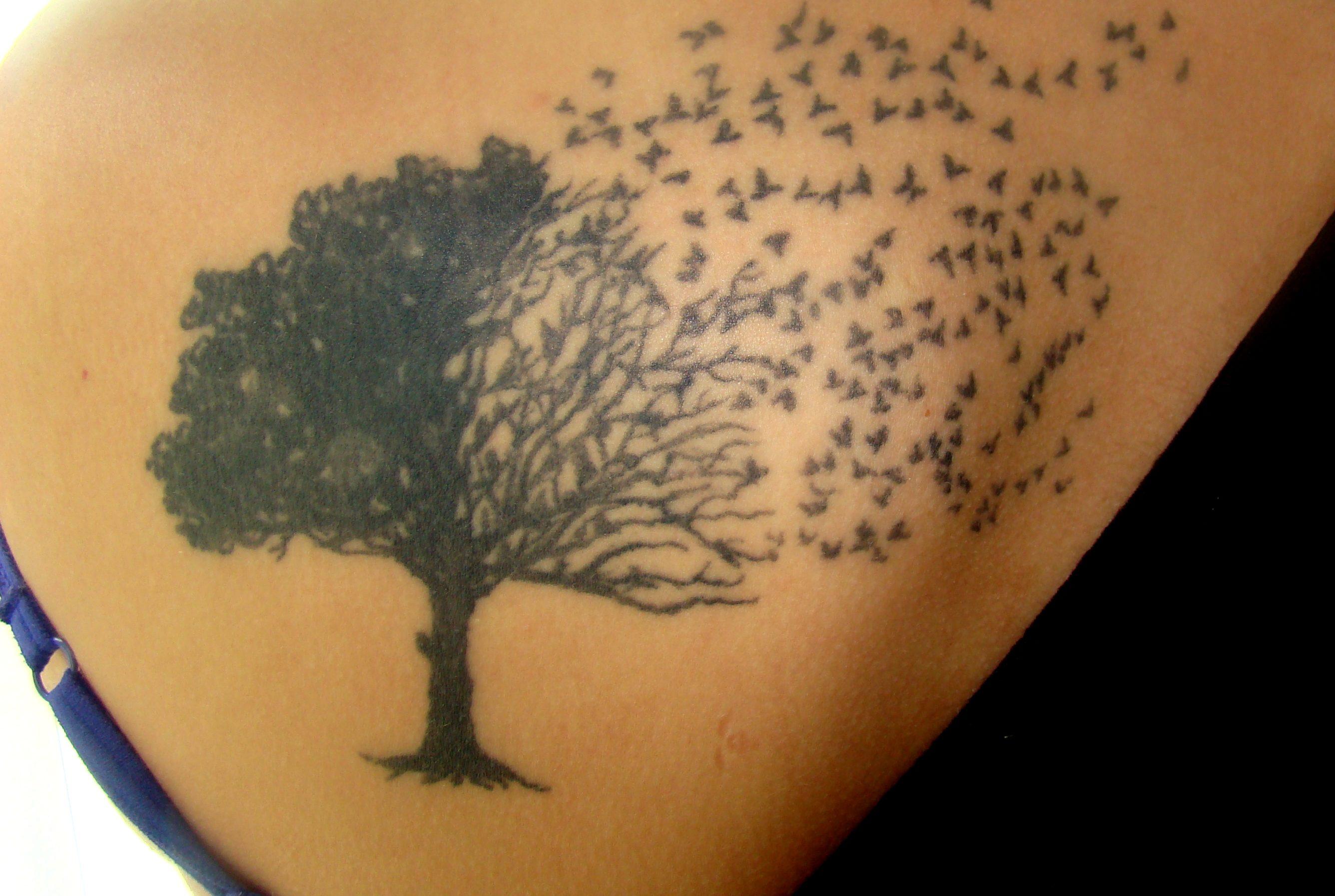 Baum Tattoo 9 Bedeutungen Hinter Dem Lebensbaum Desiredde