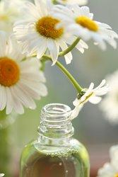 Kamillenöl Hausmittel juckende Kopfhaut
