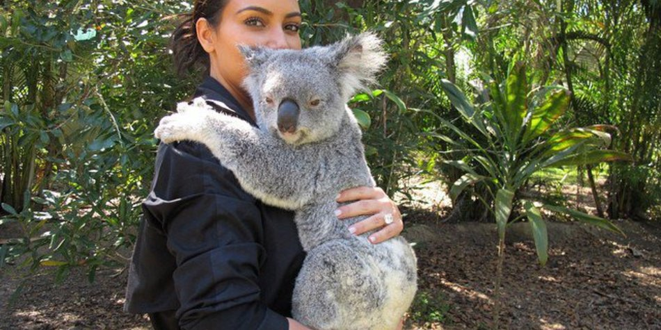 Kim Kardashian kuschelt mit Koalas