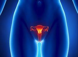 Wie viele Tage vor Eisprung Zervixschleim