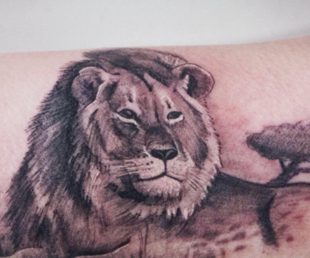 Löwen-Tattoo