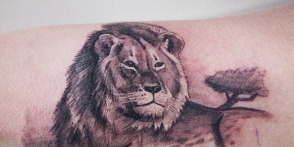 Realistische Lowenkopf Zeichnung Tattoo Vorlage 7