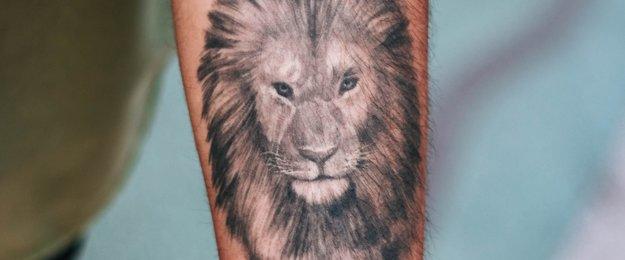 Löwen Tattoo Die Bedeutung Hinter Dem Motiv Desired De