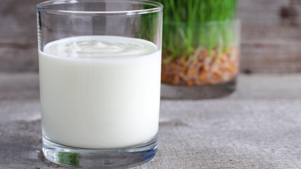 Fresh homemade yogurt in a glass