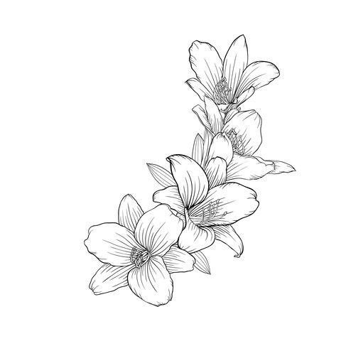 Orchideenideen Tattoos Zeichnen Blumenzeichnungen
