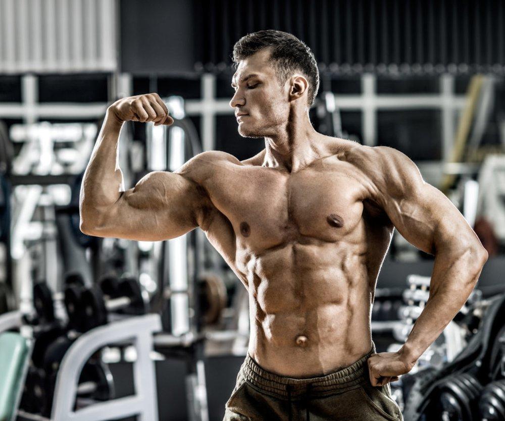 Muskel Mann