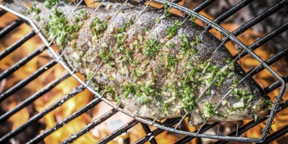 Lachsforelle grillen