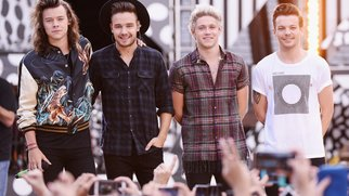 One Direction und Zac Efron harmonieren perfekt