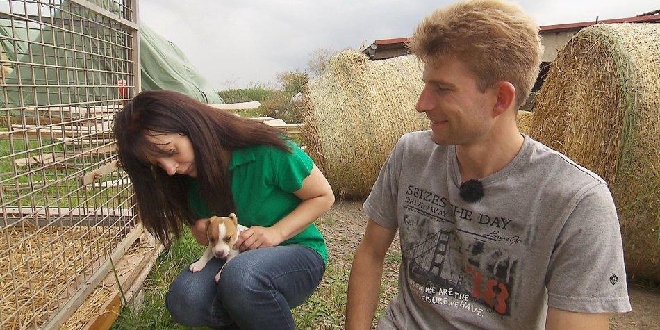 Bauer sucht Frau: Der neue Star ist ein Hund