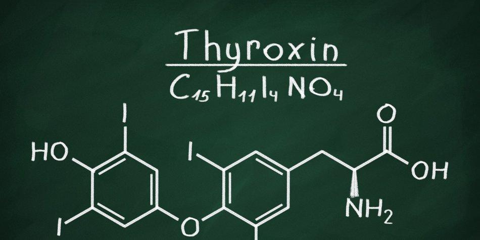 L-Thyroxin abnehmen