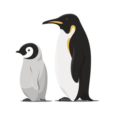 Plotterdatei Pinguin Laterne Laternebastelnkinder 12