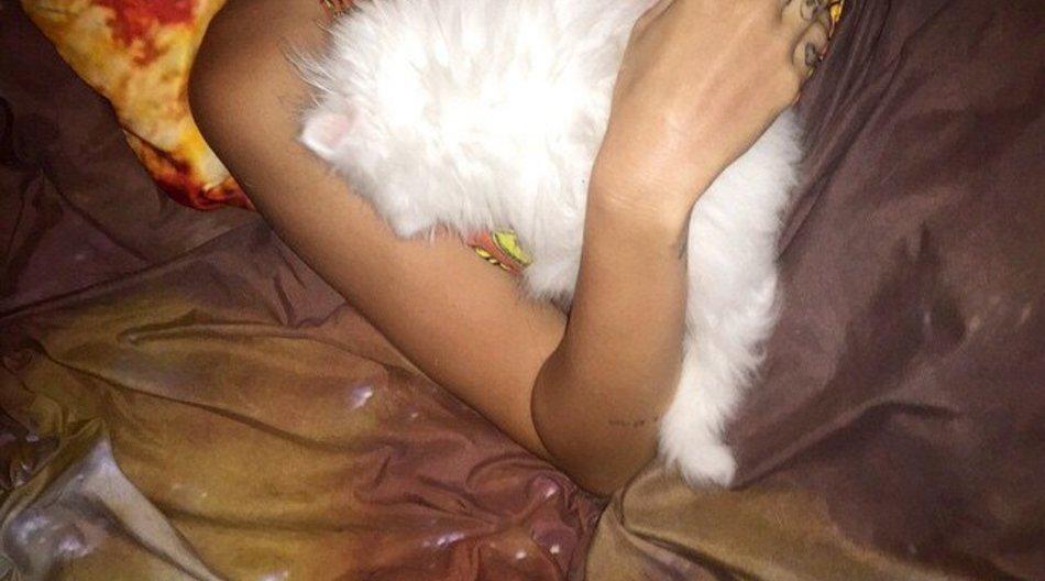 Miley Cyrus trauert um ihren Kugelfisch