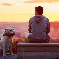 Young man with his dog at the sunrise