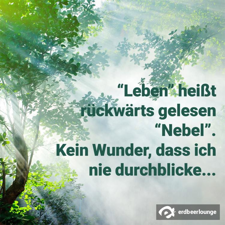 Leben_Nebel