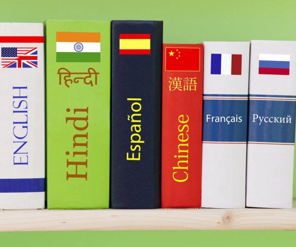 Schüler: Fremdsprachen