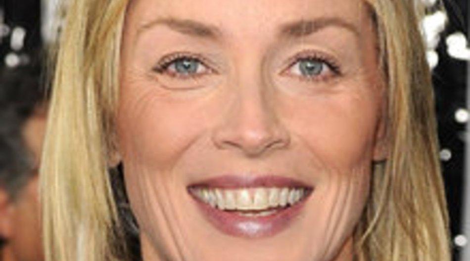 Sharon Stone und Mischa Barton: Gastrollen in Law & Order