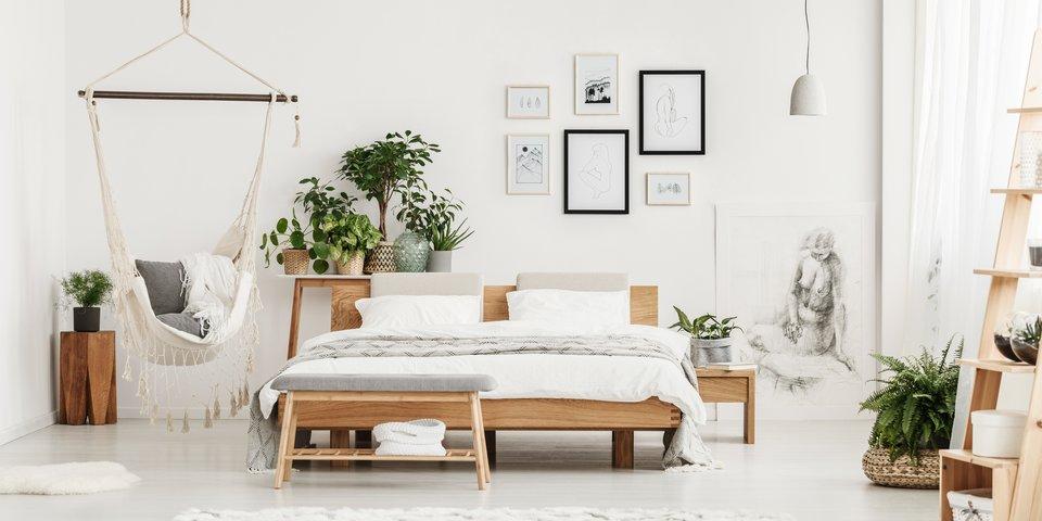 Pflanzen Im Schlafzimmer Diese 6 Arten Sind Am Besten Desired De