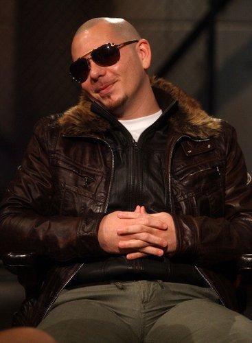 Pitbull in Plüschjacke