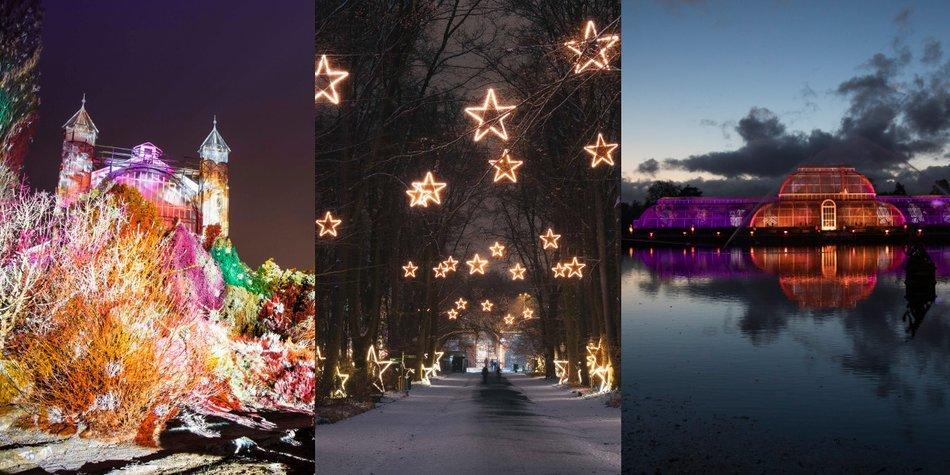 weihnachtlicher Ausflug
