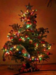Den Weihnachtsbaum zu schmücken ist ein tolles Erlebnis!