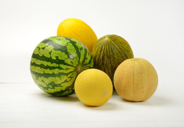 Verschiedene melonen