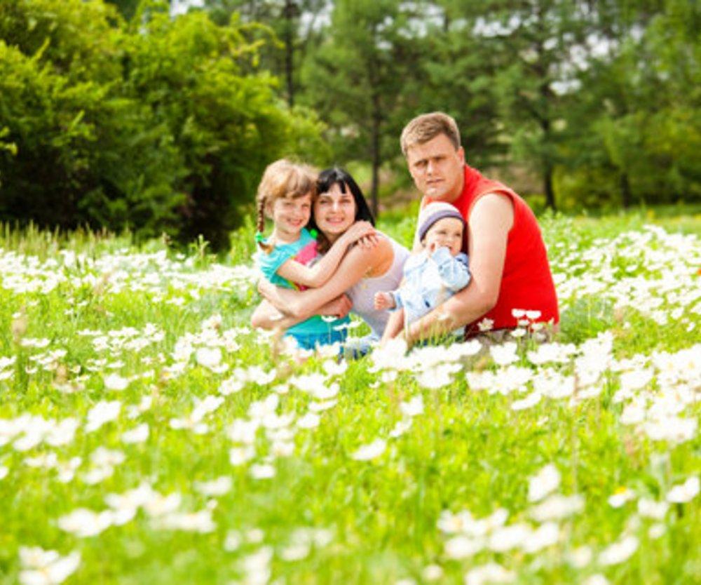 Abläufe bei der Adoption