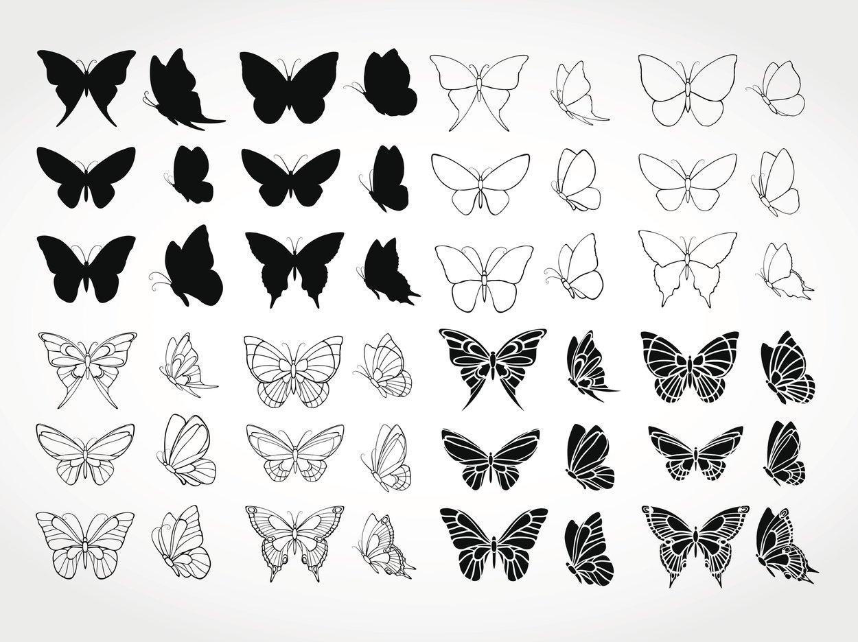 Schmetterling Tattoo Vorlagen